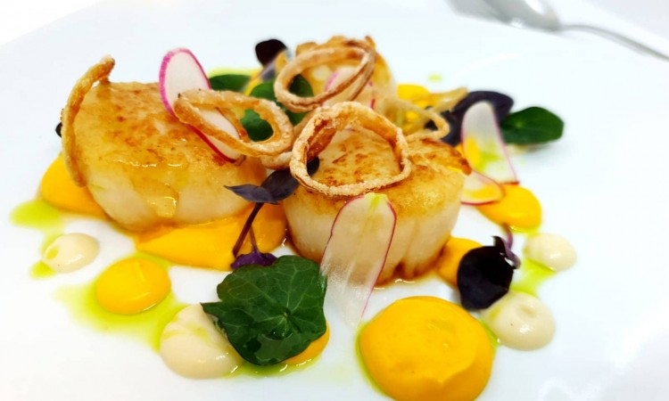 Pan fried scallops with curried carrot puree, shallot mousse, crispy shallots and tarragon oil-min