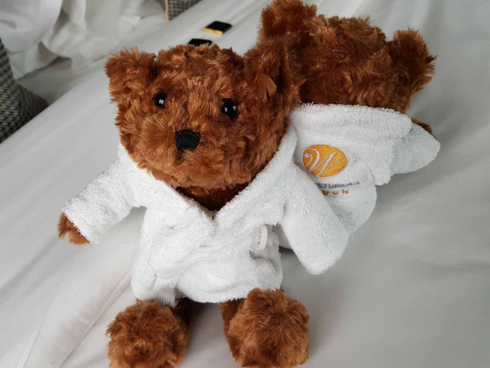 Teddy Bear at The Westbridge Hotel