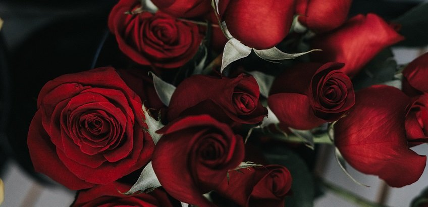 Romance Package at The Westbridge Hotel London